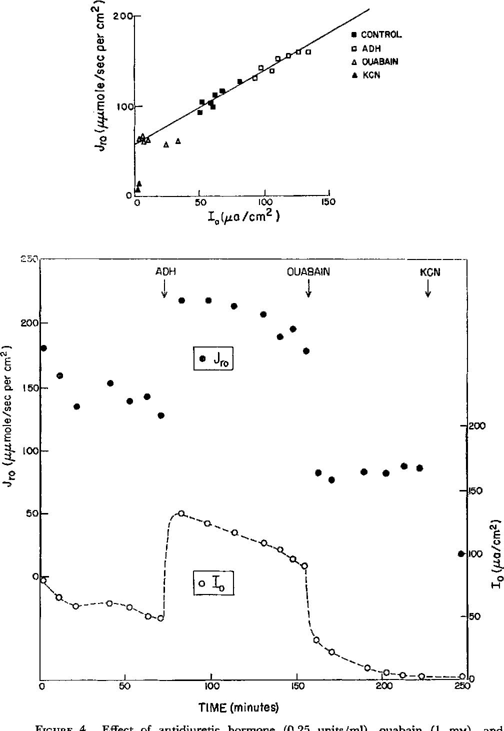 hight resolution of figure 4
