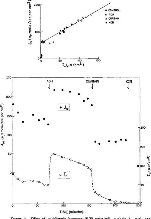 small resolution of figure 4