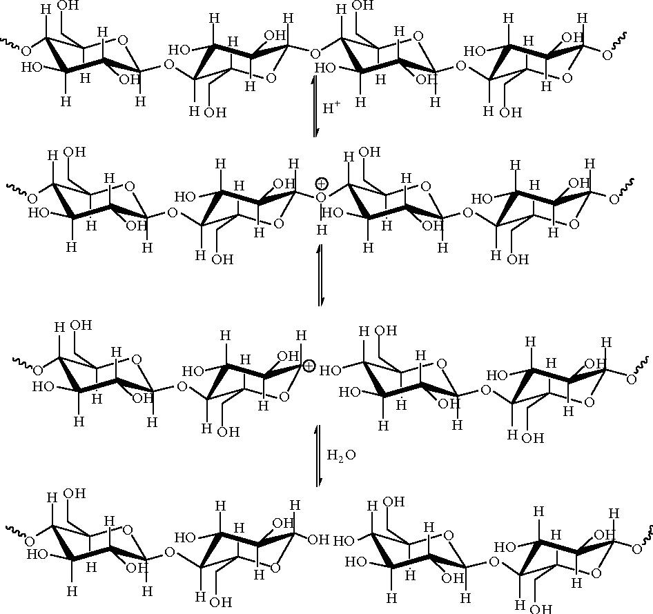 Conversion of Lignocellulosic Biomass to Nanocellulose