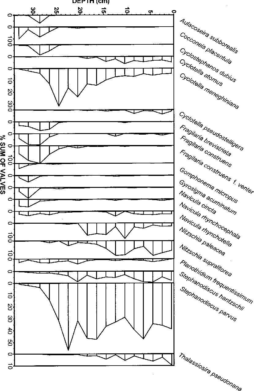 hight resolution of diatom diagram of blankaart core 5 selected taxa only percentages
