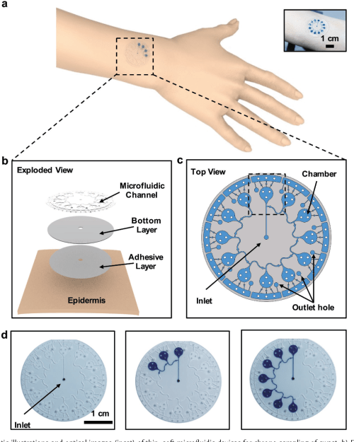 small resolution of thin soft skin mounted microfluidic networks with capillary bursting valves for chrono sampling of sweat semantic scholar