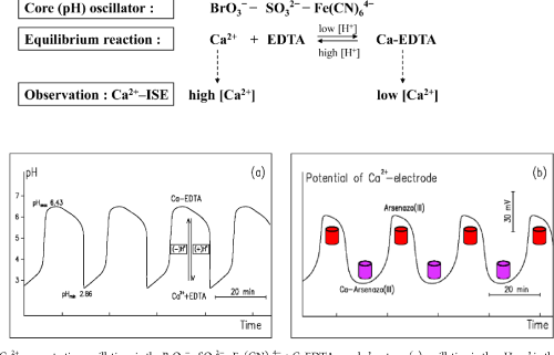small resolution of ca2 concentration oscillations in the bro3 so32 fe