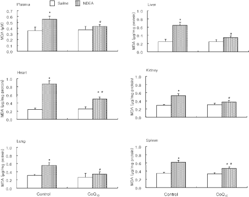 small resolution of the effect of coq10 on ndea induced lipid peroxidation in murine