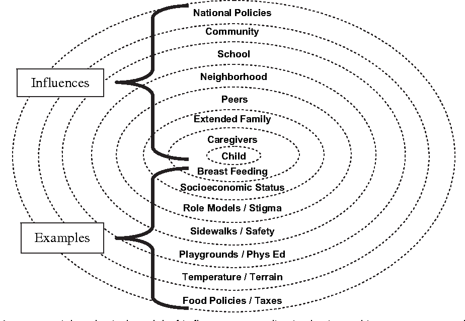 Figure 2 from Pediatric obesity: etiology and treatment
