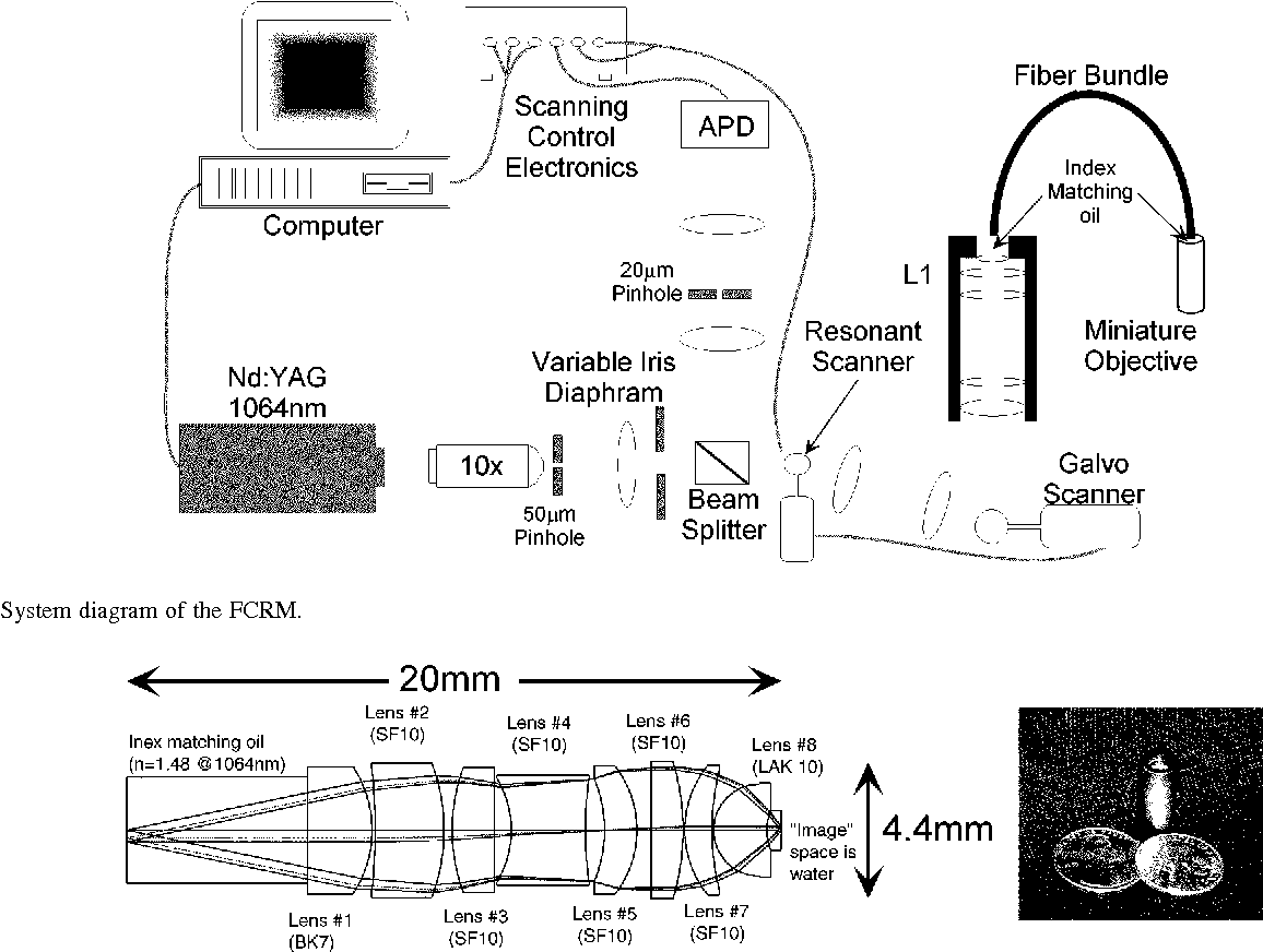 hight resolution of system diagram of the fcrm