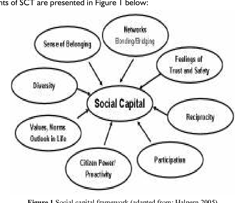 Figure 1 from Applying Social Capital Theory and the