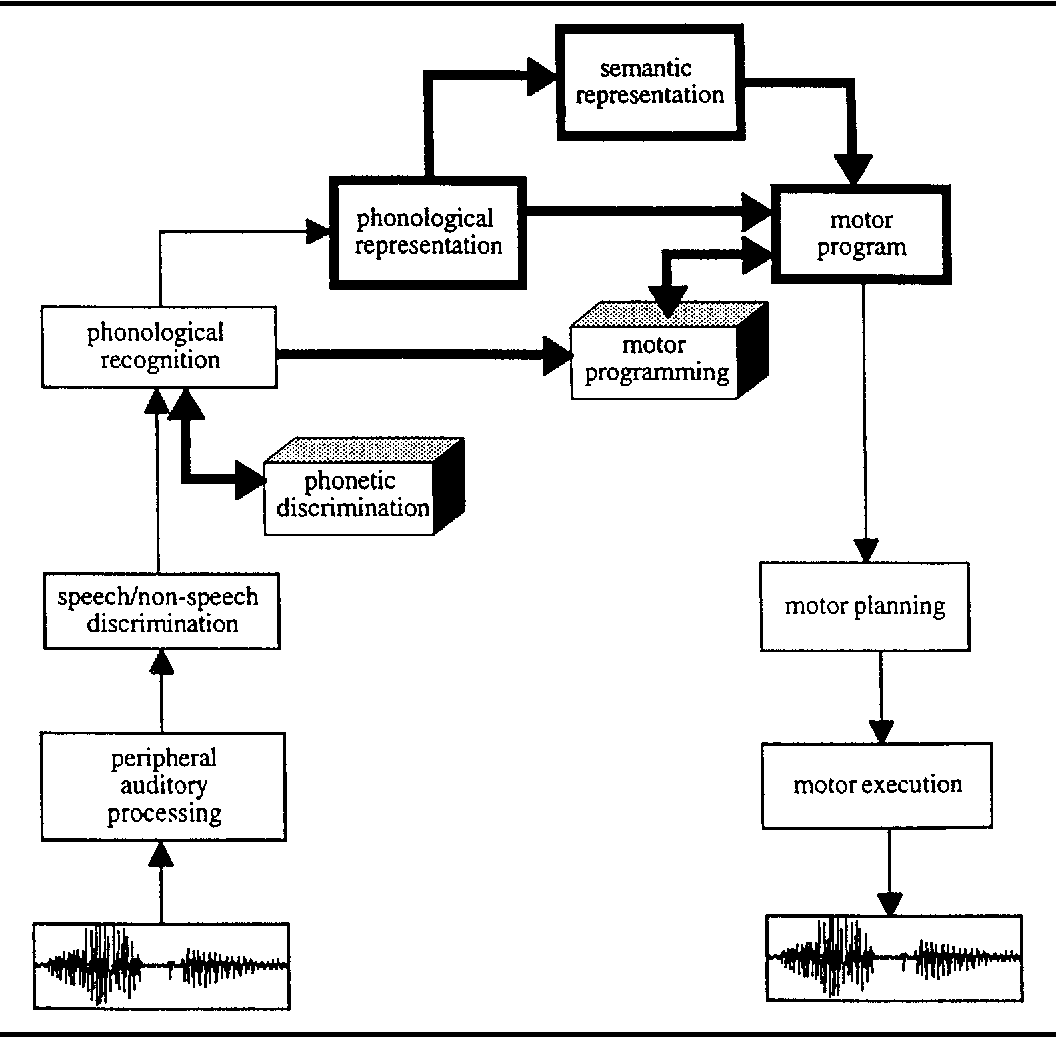 Figure 4 from Psycholinguistic models of speech