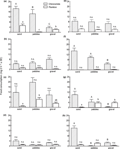 small resolution of consumption of plankton and chironomids dry mass by individual perch
