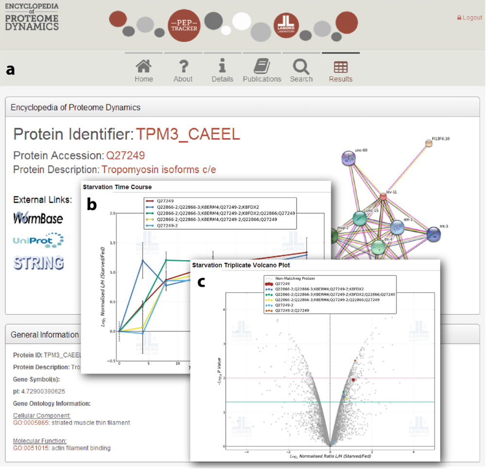 medium resolution of encyclopedia of proteome dynamics web based data sharing tool screen