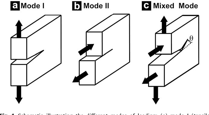 Figure 1 from Mixed-mode fracture of human cortical bone