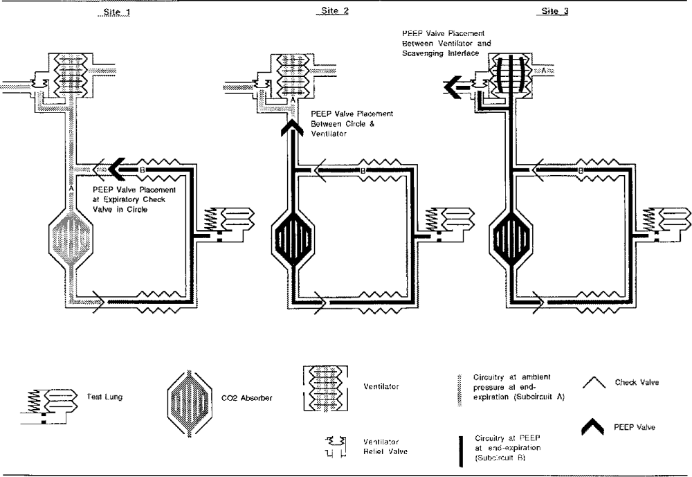 medium resolution of schematic for breathing circuits studied showing end expiratory pressure at various