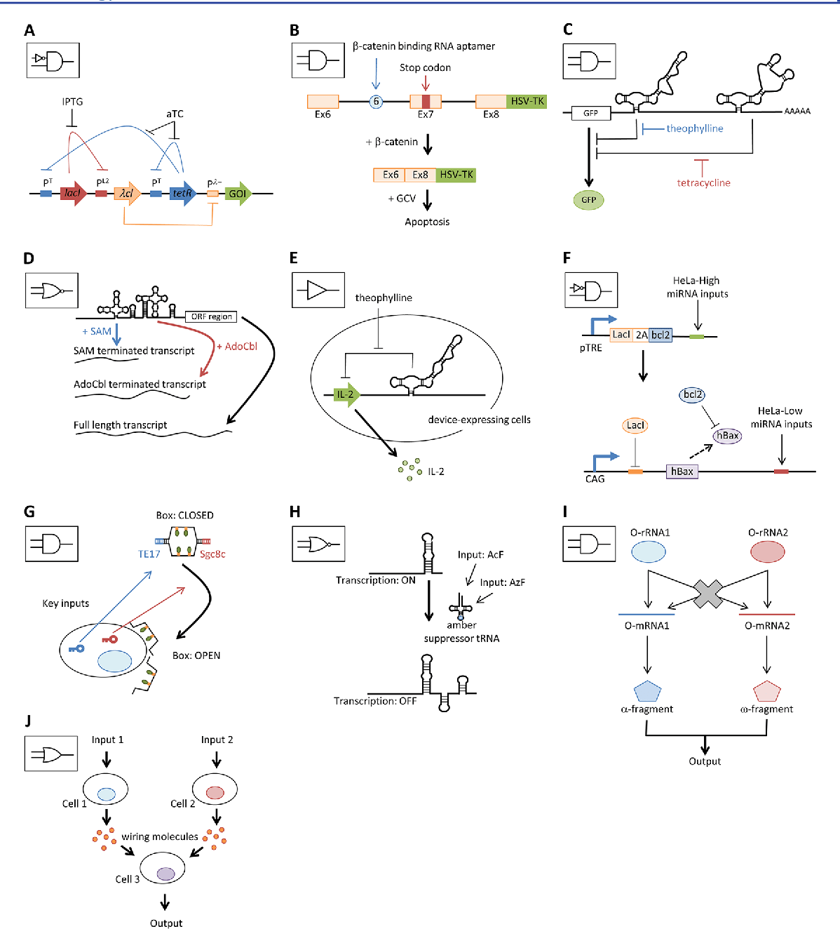 hight resolution of  a schematic diagram of representative network plasmid based logic device