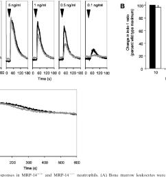 calcium flux responses in mrp 14 and mrp 14 [ 1352 x 936 Pixel ]