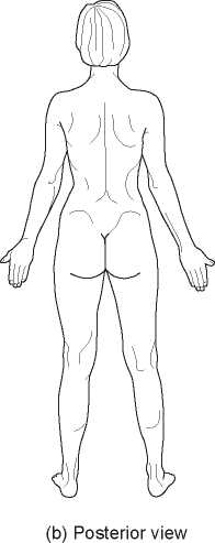 A Body Regions, Anatomical Terminology, and Directional Terms