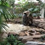羽田空港のオアシス、屋内庭園「花の楽園」
