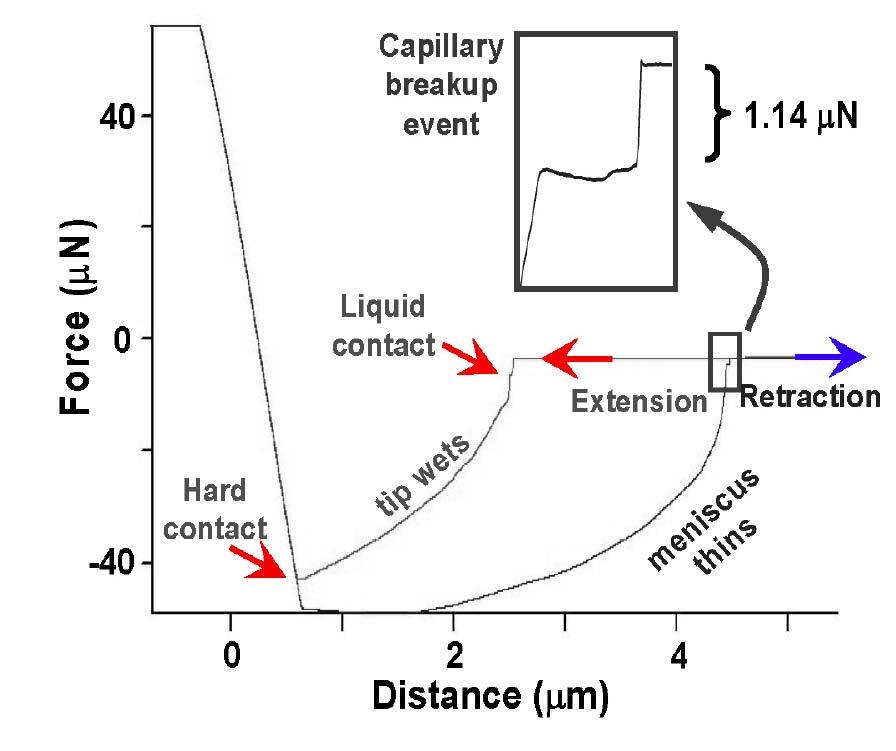 Suspended Polymer Nanofiber Arrays of Long Range Order