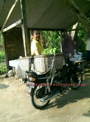 this guy (wak bidin) will come everyday to see fresh vege and fish.