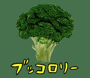 bukkorori-umi2のコピー