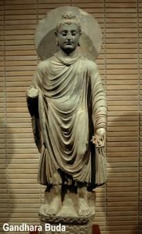 Gandhara_Buddha_(tnm)