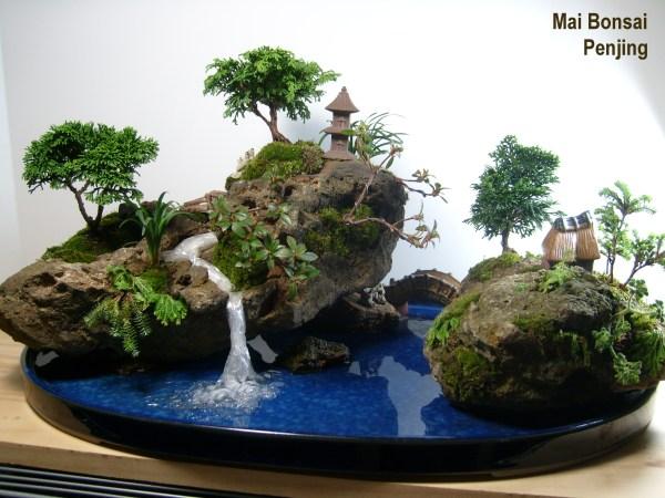penjing bonsai