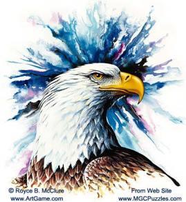 american_bald_eagle_head_1B