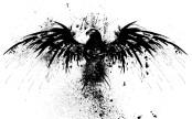 eagle-splatter