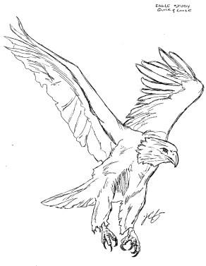 EagleStudy_quick&loose_150dpi