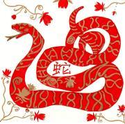chinese-zodiac-snake-barbara-giordano
