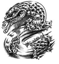 ideatattoo.com*blog*wp-content*uploads*2011*08*young-snake-tattoo