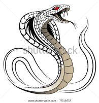 image.shutterstock.com*display_pic_with_logo*522520*522520,1306084298,1*stock-vector-snake-cobra-in-the-form-of-a-tattoo-77718772