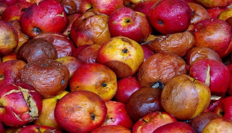 Ο «πόλεμος» ξεκίνησε από τα τρόφιμα! Τόνοι δηλητηριασμένων τουρκικών φρούτων κατασχέθηκαν στον Έβρο