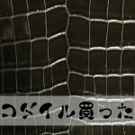 【レザークラフト】トスカーナのトコ処理とクロコダイルとジャクルシー