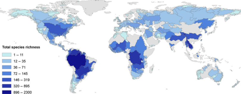 Global-freshwater-fish-species-richness-patterns-at-the-drainage-basin-grain-after