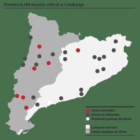 mapa_musclo_zebrat.png_202715973