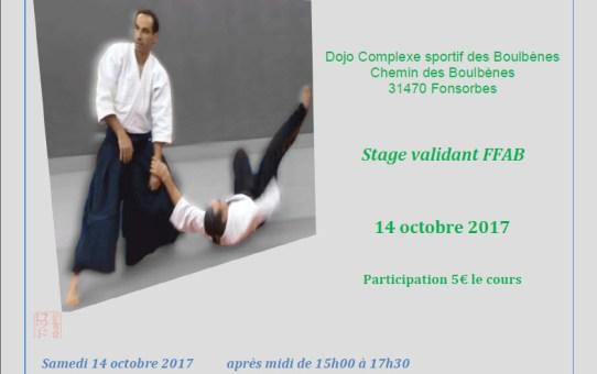Stage GHAAN à Fonsorbes 14 Octobre 2017