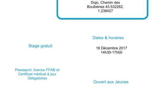 Stage Jeunes à Fonsorbes 16 Décembre 2017