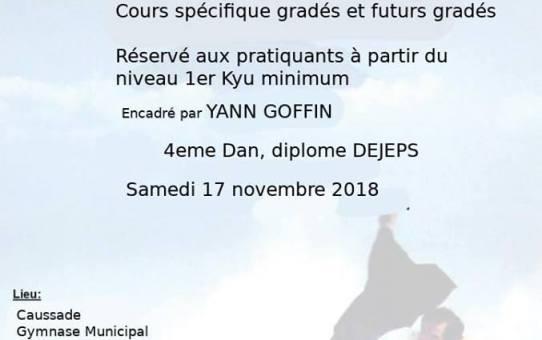 17 Novembre - Stage animé par Yann Goffin à Caussade - Réservé aux pratiquants à partir du 1er kyu