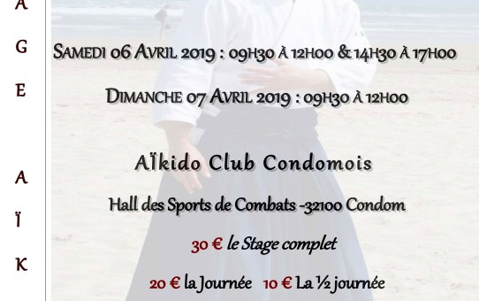 6 & 7 Avril 2019 - Stage avec Xavier Dufau 5ème dan