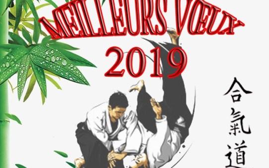 Vœux 2019 de Raymond Solano, Président de la Ligue Occitanie d'Aïkido et de Budo