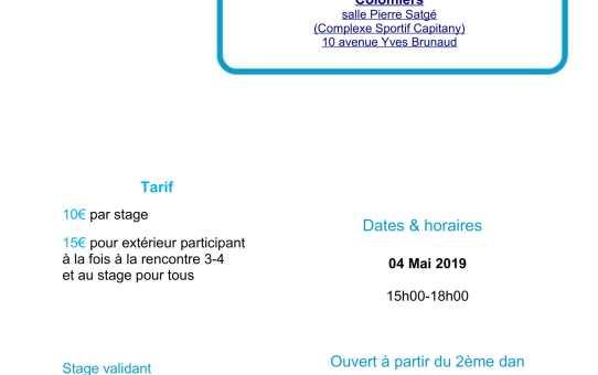 4 mai 2019 - Rencontre 3ème 4ème dan animée par Guillaume Colonge 5ème dan à Colomiers