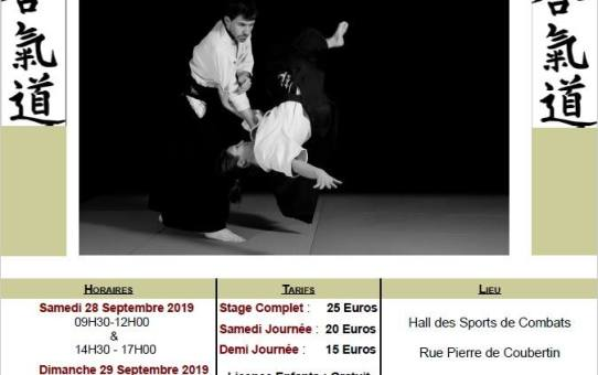 28 & 29 Septembre 2019 - Stage dirigé par Yann Goffin 4ème dan à Condom
