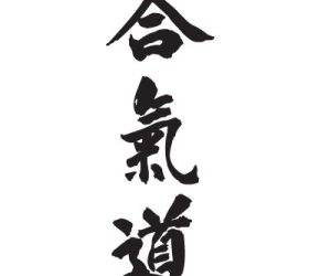 Volkshochschulkurs Aikido für Anfänger