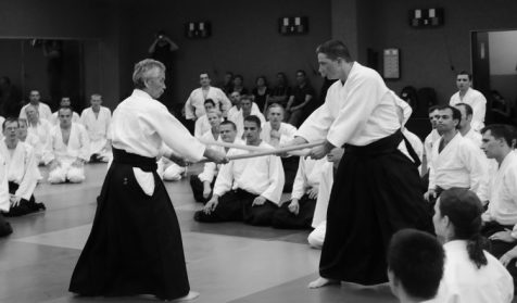 Image result for aikido