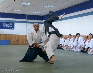 jorge-aikido-seminario-cursos