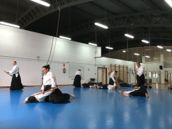 Aikido Aikikai San Vicente - Alicante - 2015, noviembre - IMG_9977