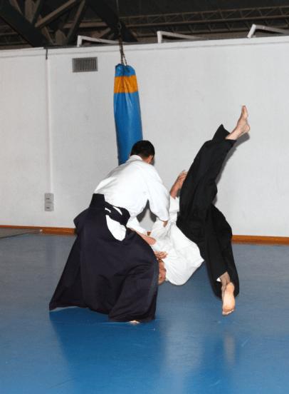 Aikido Aikikai San Vicente - Alicante - Curso Roberto Sánchez - 2013 jun - 090