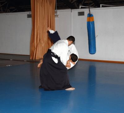 Aikido Aikikai San Vicente - Alicante - Curso Roberto Sánchez - 2013 jun - 127