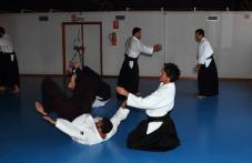 Aikido Aikikai San Vicente - Alicante - Curso Roberto Sánchez - 2013 jun - 181