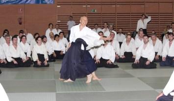 Hayato Osawa Shihan, Madrid 2014 - IMG_1695_retoc
