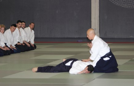 Hayato Osawa Shihan, Madrid 2014 - IMG_1790_retoc